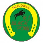 logo BPM